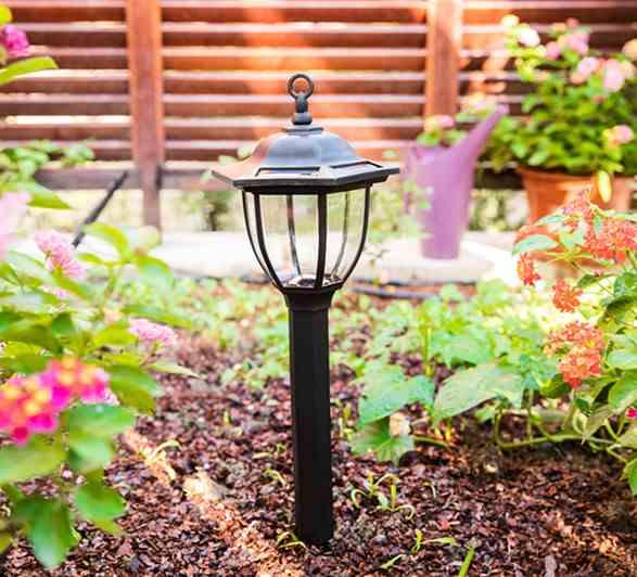 Як подбати про сонячне світло саду?